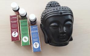 Conjunto Buda Essence