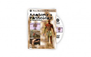 DVD Anatomia e Patologias para Terapeutas Corporais